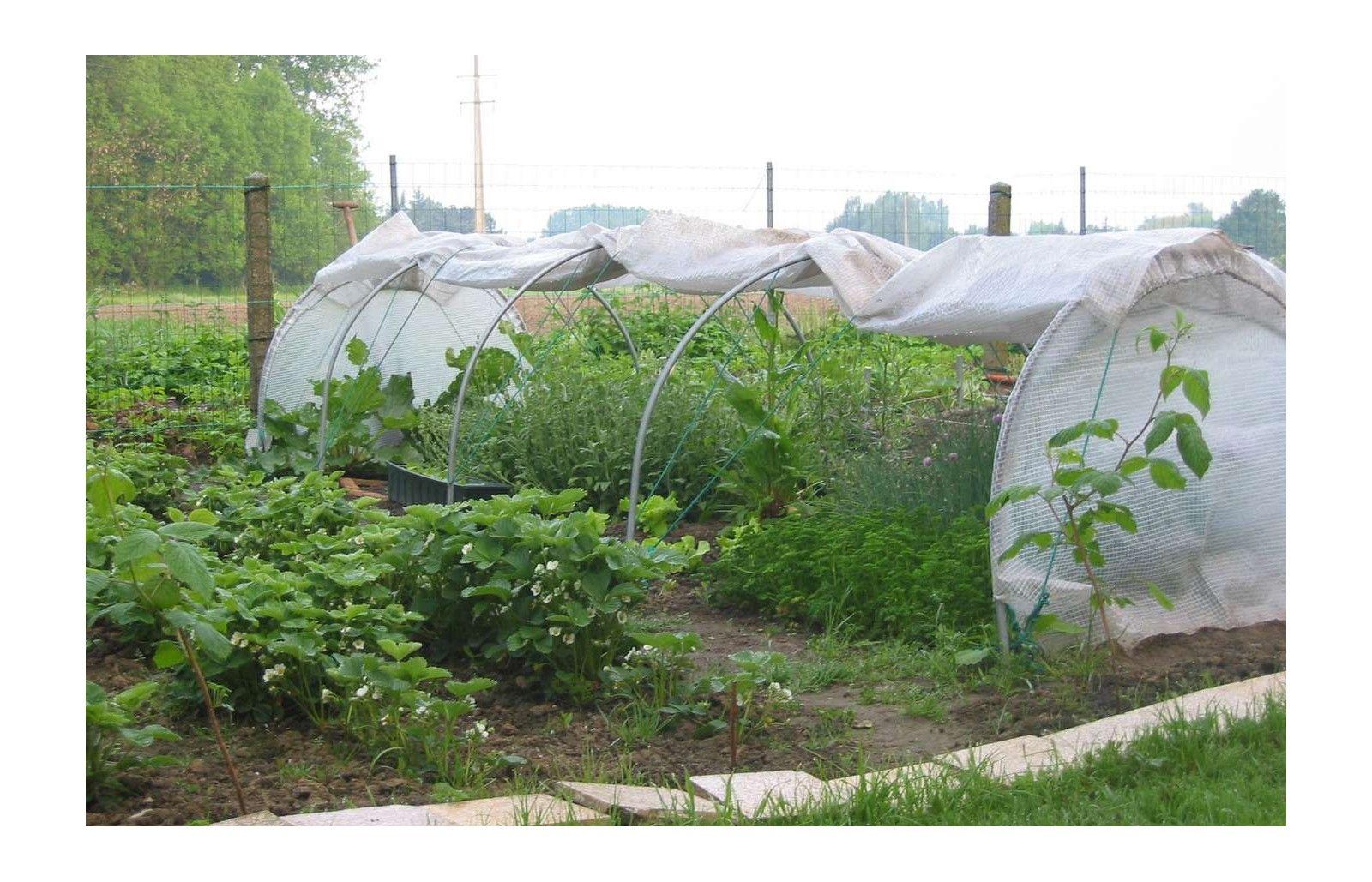 Bache de toit chenille long 5m00 serres tonneau - Film plastique anti uv pour serre de jardin ...