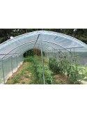 Abri tomates pieds droits 3m00 x 9m00